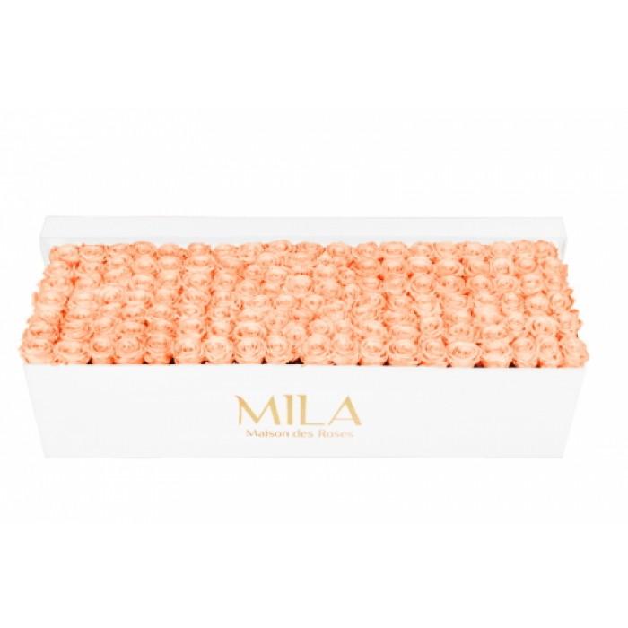 Mila Classic Royal White - Pure Peach