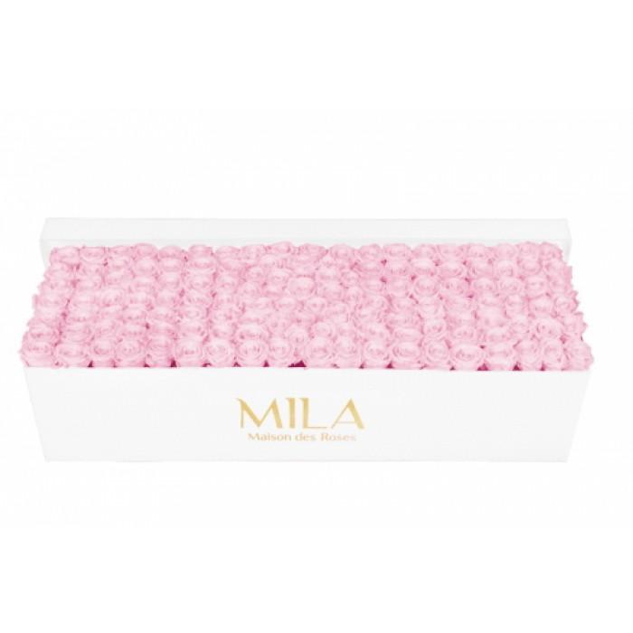 Mila Classic Royal White - Pink Blush