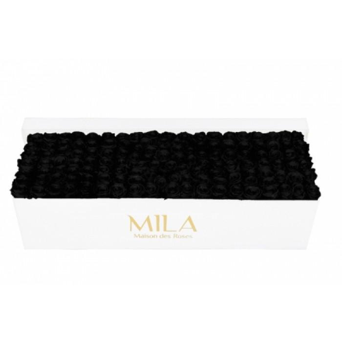Mila Classic Royal White - Black Velvet